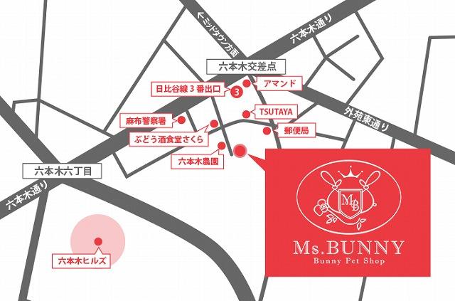 map-i