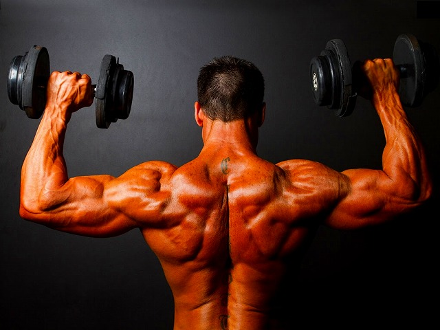 muscle-specific-hypertrophy-22