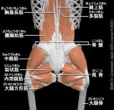 脊柱管狭窄症06